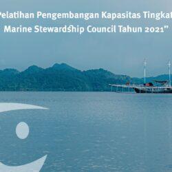 MSC Luncurkan Platform Pelatihan Daring Tentang Perbaikan Perikanan yang Berkelanjutan di Indonesia