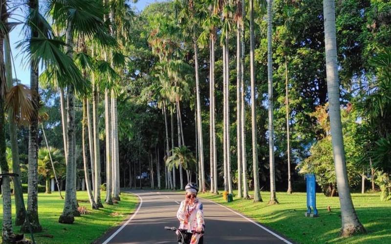 Kebun Raya Bogor Kembali Buka, Pengelola : Hanya Untuk Olahraga